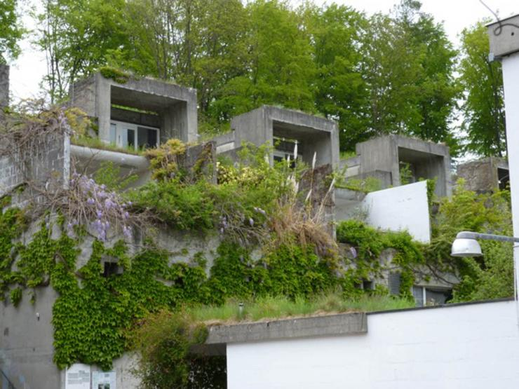 halen-terrasses jardins.jpeg